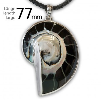 Black Nautilus Pendant set in .925 Sterling Silver – picture 2