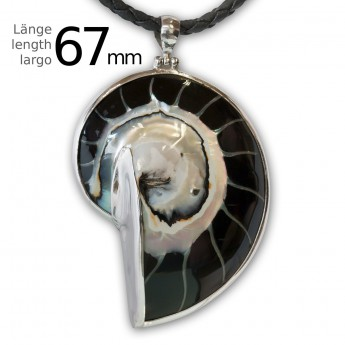 Black Nautilus Pendant set in .925 Sterling Silver – picture 3
