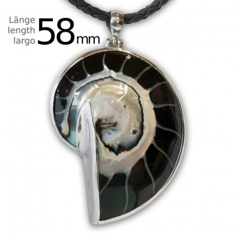 Black Nautilus Pendant set in .925 Sterling Silver – picture 4