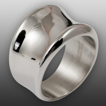 Elegant Curved 316L Stainless Steel Designer Ring – picture 1