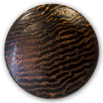 Fake Plug from buffalo horn or buffalo bone and various woods - Diameter 9mm – picture 20