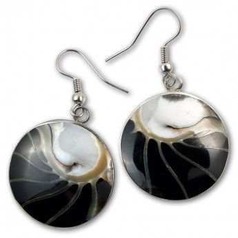 Stainless Steel Nautilus Shell Earrings in 4 different colors – picture 3
