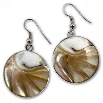 Stainless Steel Nautilus Shell Earrings in 4 different colors – picture 4