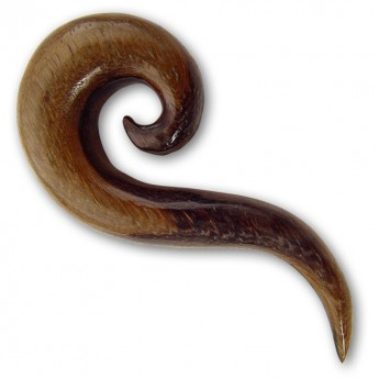 Wood Ear Spiral Expander - Curved Spiral – picture 3